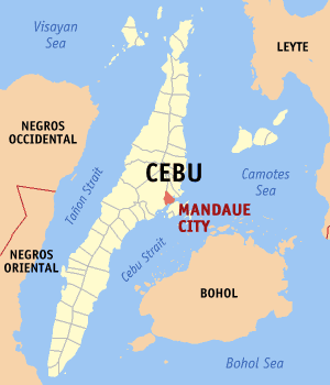 cebu foundation day 2015