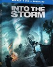 Into the Storm online subtitrat romana full HD .