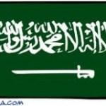 IDE: l'Arabie Saoudite en tête avec 12,2 milliards de dollars