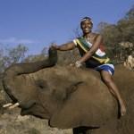 Afrique du Sud: vers la redynamisation du tourisme
