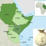 Afrique de l'Est : Les fonds Private Equity ont atteint 1,44 milliards de dollars en 2015