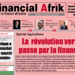 Au sommaire de Financial Afrik n°29