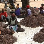 Burkina Faso : la BAD apporte son appui à l'agriculture et l'hydraulique