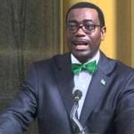 Le président de la BAD reçoit son passeport africain