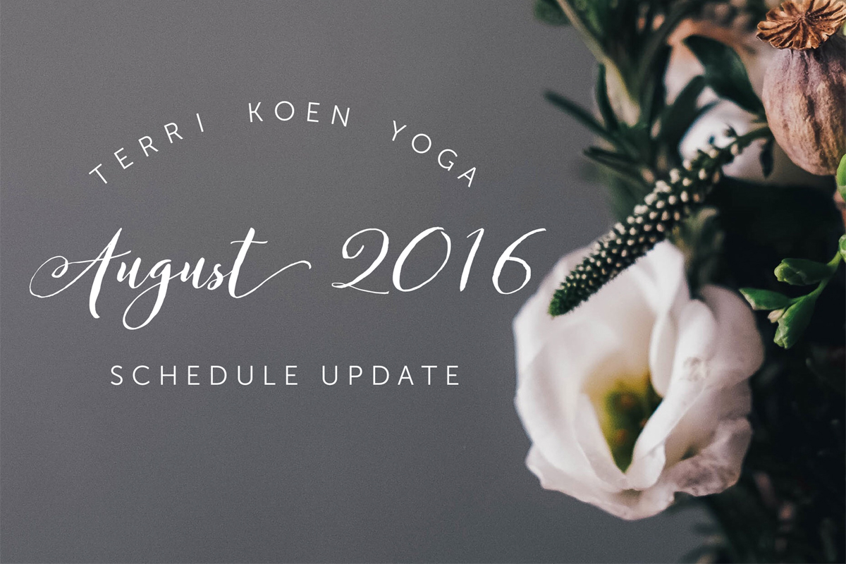 findingdrishti-august2016-schedule