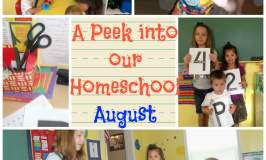 A Peek into our Homeschool~August