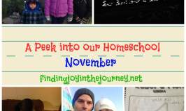 A Peek into our Homeschool~November