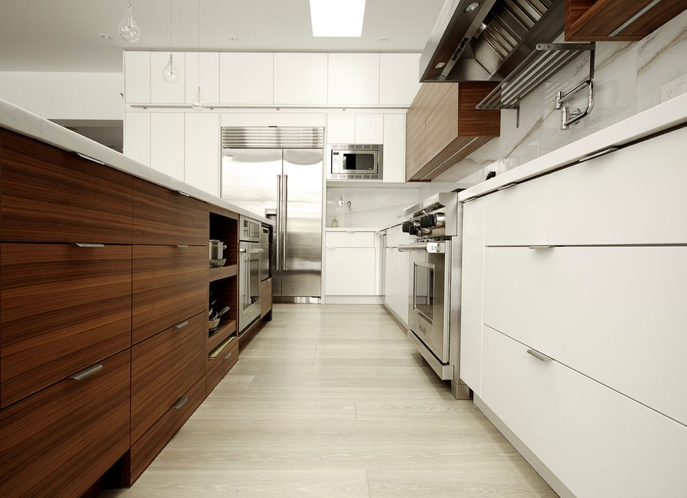 5 Inch Drawer Pulls with Contemporary Kitchen and Built in