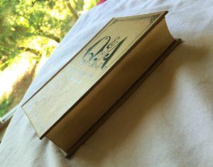 fine print journaling reviews: q&a journal