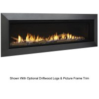 Majestic Wide View Echelon II Direct Vent Fireplace 60 ...