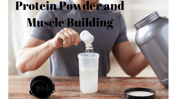 protein-powder-and-muscle-building