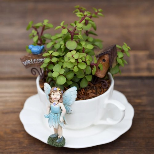 Medium Of The Fairy Gardens