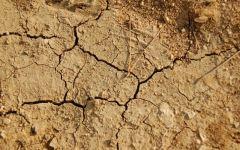 Siccità 2012: per le domande di aiuto basta un click