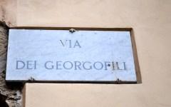 Una strada alla memoria di Gabriele Chelazzi