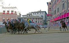 Palio di Siena: indagato il fantino Trecciolino, sequestrati tre cavalli