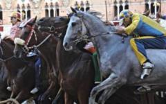 Palio di Siena: al Leocorno anche la quarta prova. Operato, e già in piedi, il cavallo della Giraffa (che non correrà)