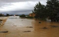 Alluvione Maremma, sos delle aziende agricole ma i fondi non ci sono