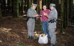 Blitz della Forestale, maxi sequestro di funghi