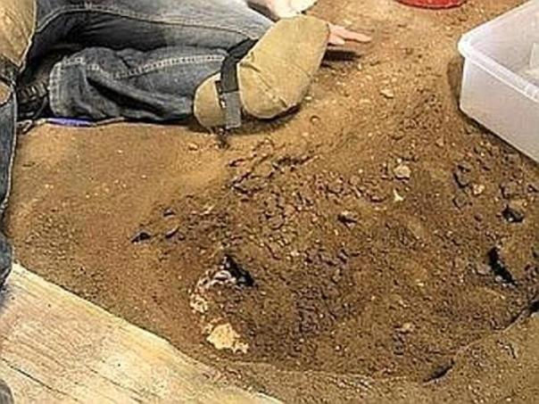 Gli scavi di Palazzo Medici Riccardi