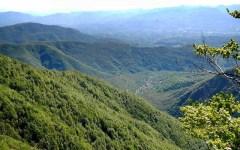 Lunigiana: è viva la donna anziana dispersa nei boschi da un giorno