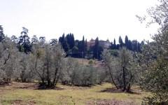 Firenze, la Provincia vende la storica proprietà di Mondeggi e Lappeggi per quasi 8 milioni