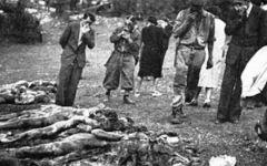 Firenze, vittime delle foibe: il Giorno del Ricordo in Consiglio comunale