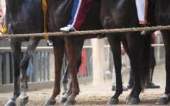 Palio di Siena del 2 luglio 2015, vince la Torre dopo oltre un'ora di mossa