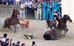 Palio di Siena 16 agosto 2015: animalisti in corteo ma lontani da piazza del Campo