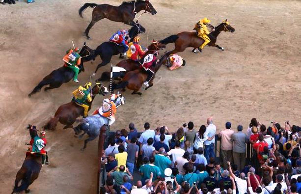 Palio di Siena, s'indaga su due cavalli morti, forse per doping
