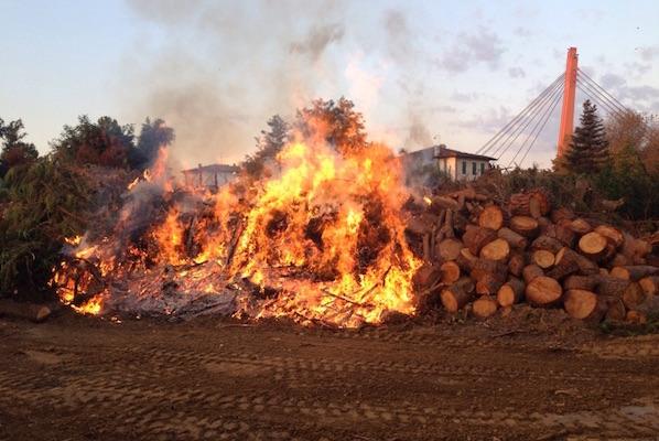 L'incendio di legnami alla Ditta Pistocchi stamani 20 settembre