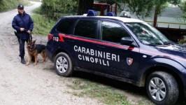 Unità cinofile dei carabinieri al lavoro