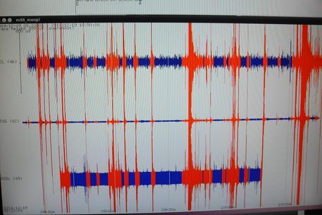 Prato ricerche, Istituto Geofisico Toscano, il sismografo con lo sciame sismico della mattinata 19 Dicembre 2014. ANSA/CLAUDIO GIOVANNINI