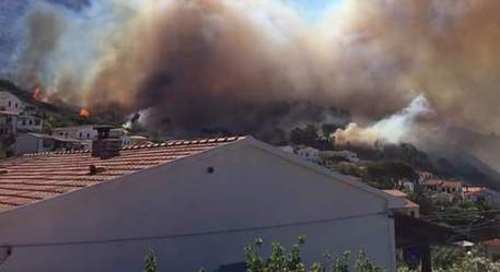 incendi all'Elba
