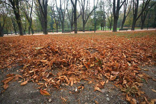 Meteo/L'autunno arriva a metà settimana