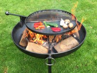Fire Pit Plain Jane Collection with Swing Arm BBQ Rack ...