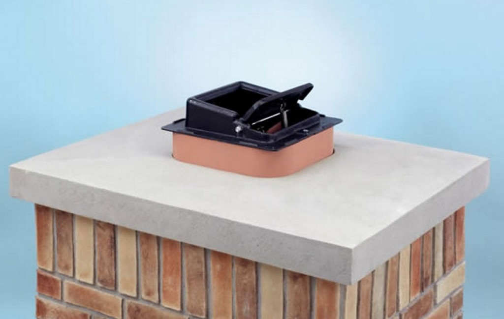 How To Remove Birds And Nests From Chimney The Blog At