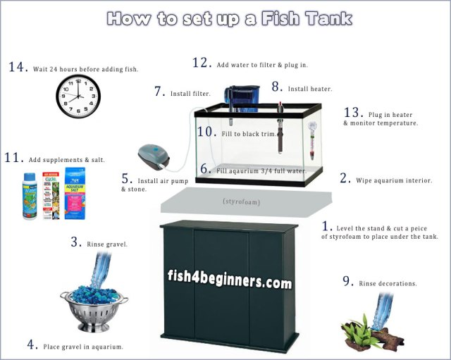 How to Set Up a Fish Tank | With Picture Guide | Fish4Beginners