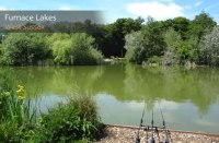 Furnace Lakes Fishery Review