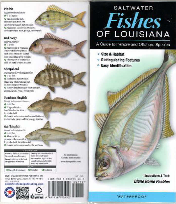 Fish Identification Guides, Reef fish identification,Guides,slates