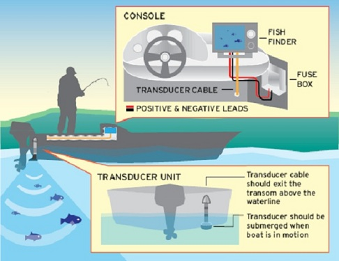 Fishfinder Wiring Diagram - Wwwcaseistore \u2022