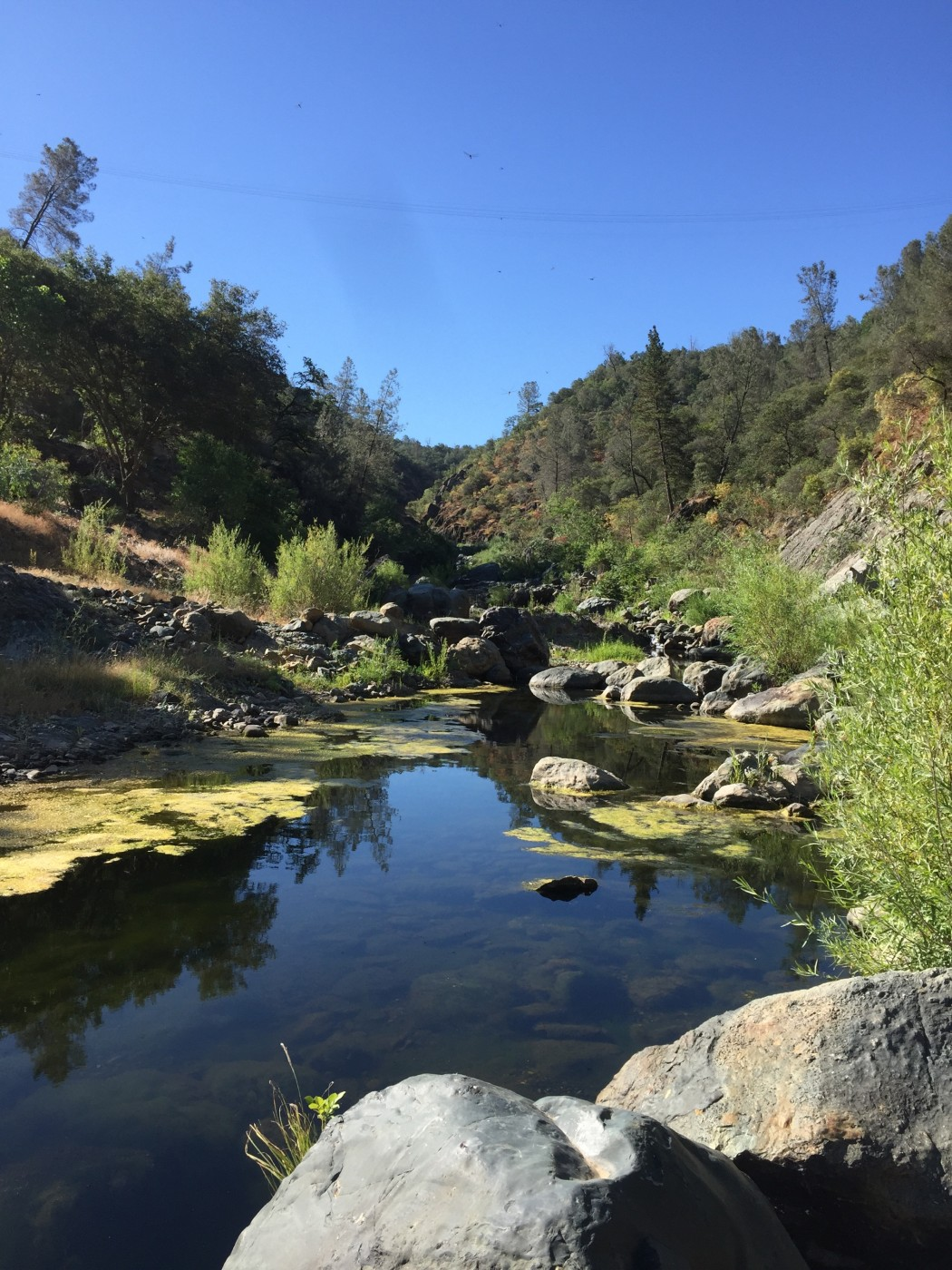 Fish with jd the web 39 s best fishing magazine for Yuba river fishing report