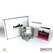 SimCity Megalopolis 1 800x800