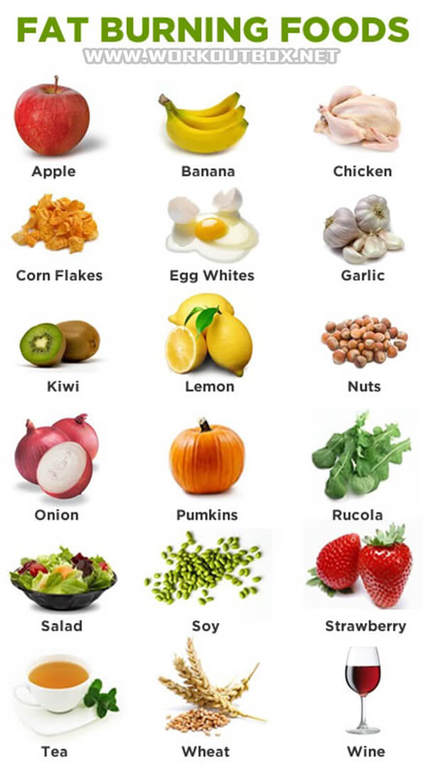 Top Fat Burning Foods - Healthy Fitness Tips Apple Egg Pumkins ...