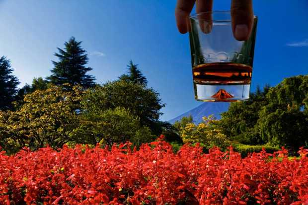 Fuji on the rocks