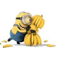Minions Banana Language Translated