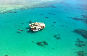 Cloud 9 Fiji is the Floating Bar Middle of The Ocean With The Most Beautiful View