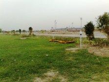 Nayab City Multan Central Park spring flowers (5)