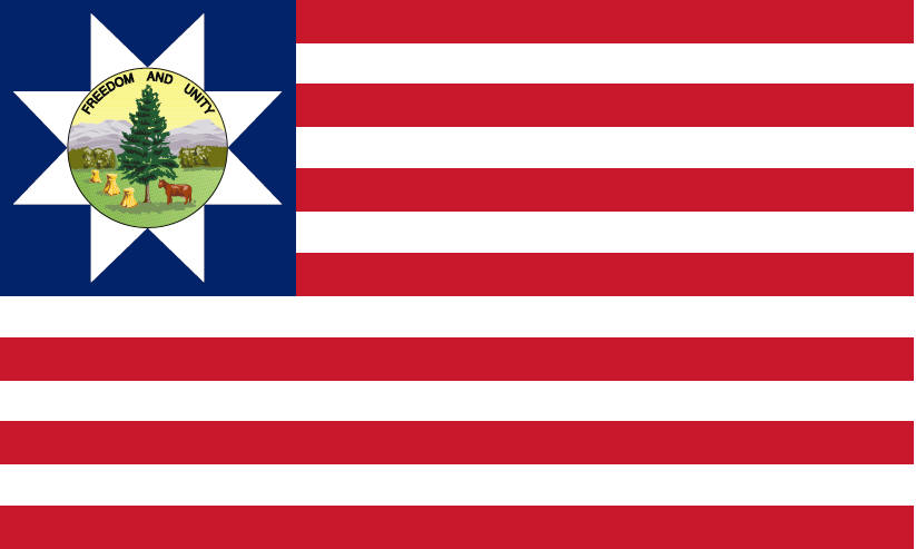 Historical Flags from American history, Confederate Flags, Betsy