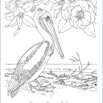 Free State Bird Coloring Pages - for all 50 states