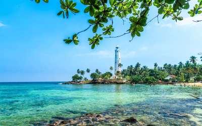 Sri Lanka Singles Holidays for 30 & 40 somethings | Flash Pack